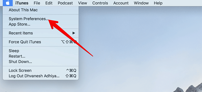 Click on System Preferences in macOS Mojave
