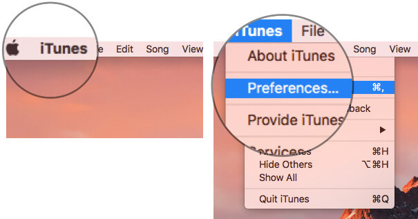 Click on iTunes in Menu bar and select Preferences on Mac