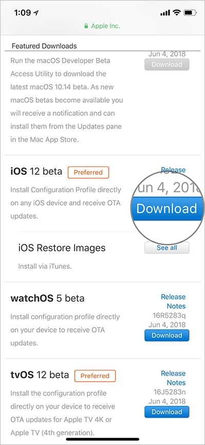 Download iOS 12 Developer Beta on iPhone or iPad