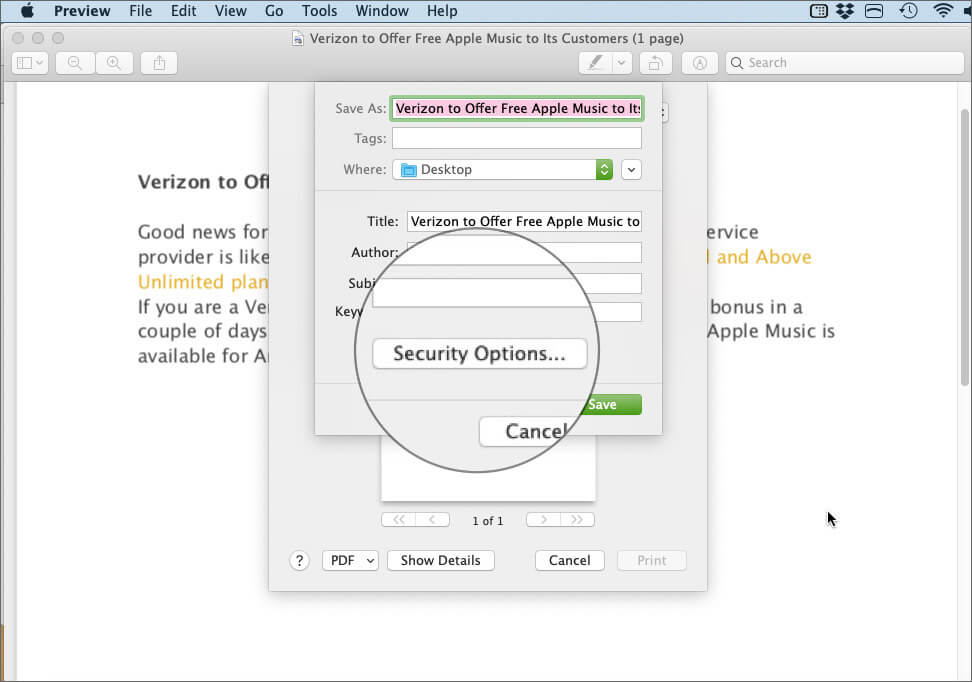 Click on Security Options in PDF Preview App on Mac