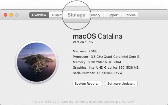 Select Storage in About This Mac