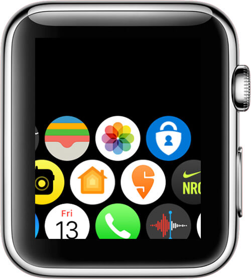 Open Photos app on your Apple Watch