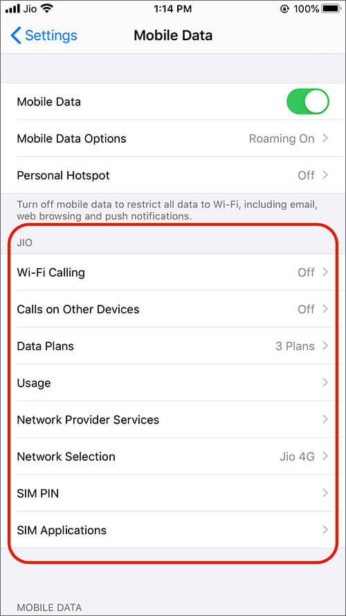 Check Option in Mobile Data for Jio Users on iPhone