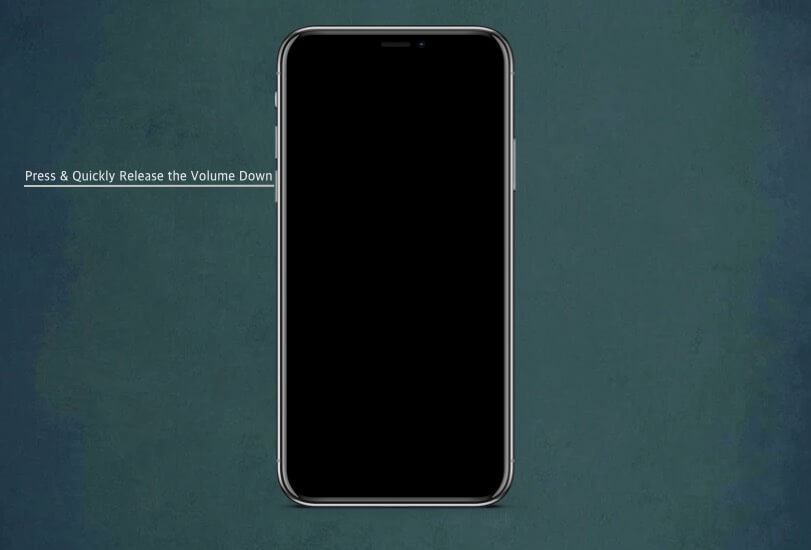 Press and Quickly Release the Volume Down button on iPhone 11