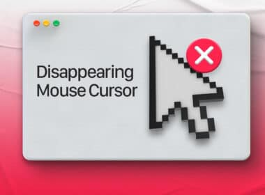 Mouse cursor disappears on Mac