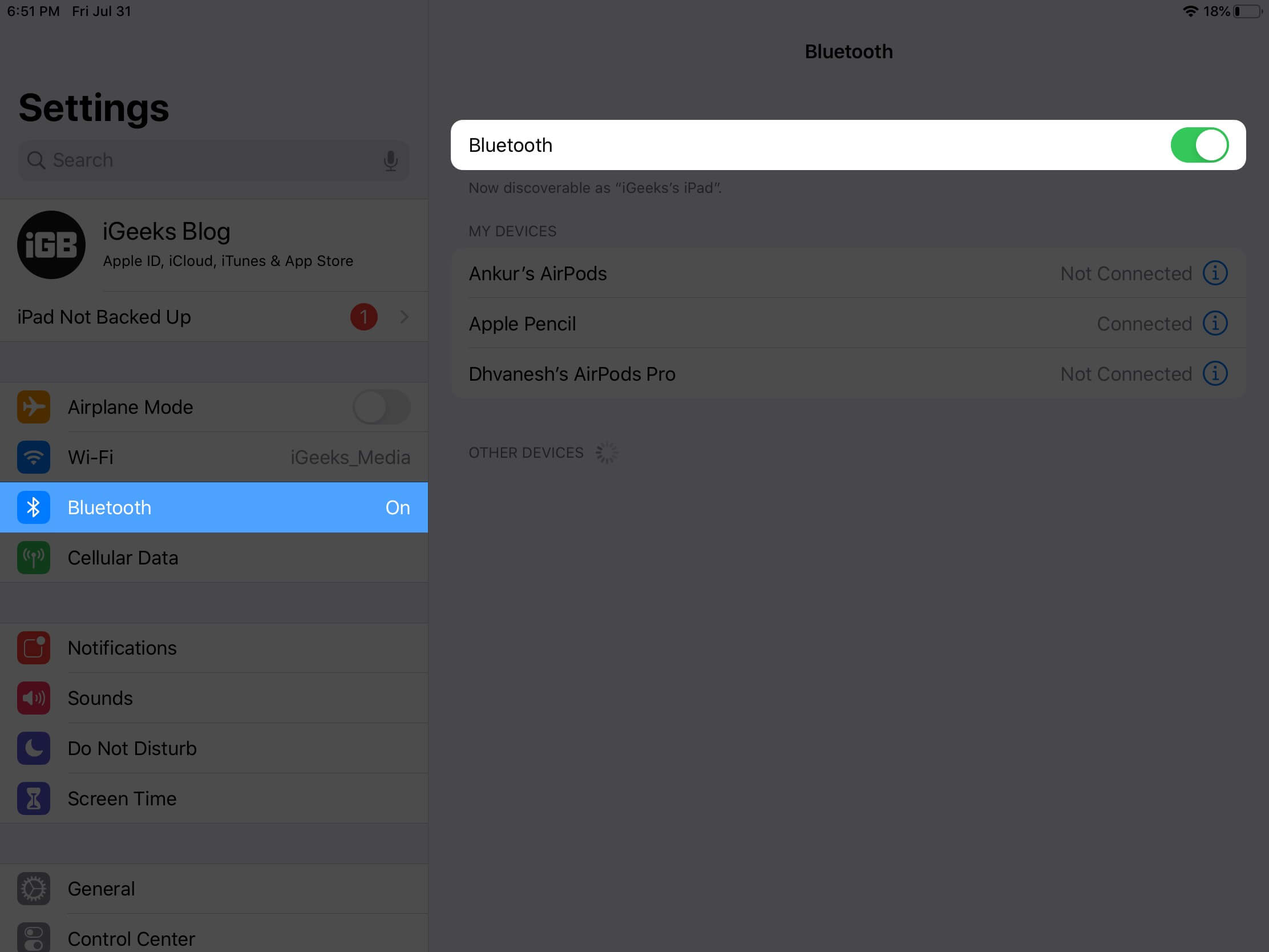 check bluetooth is enabled on ipad