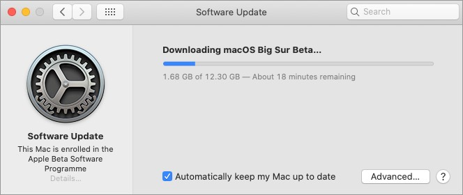 download macos big sur public beta on mac