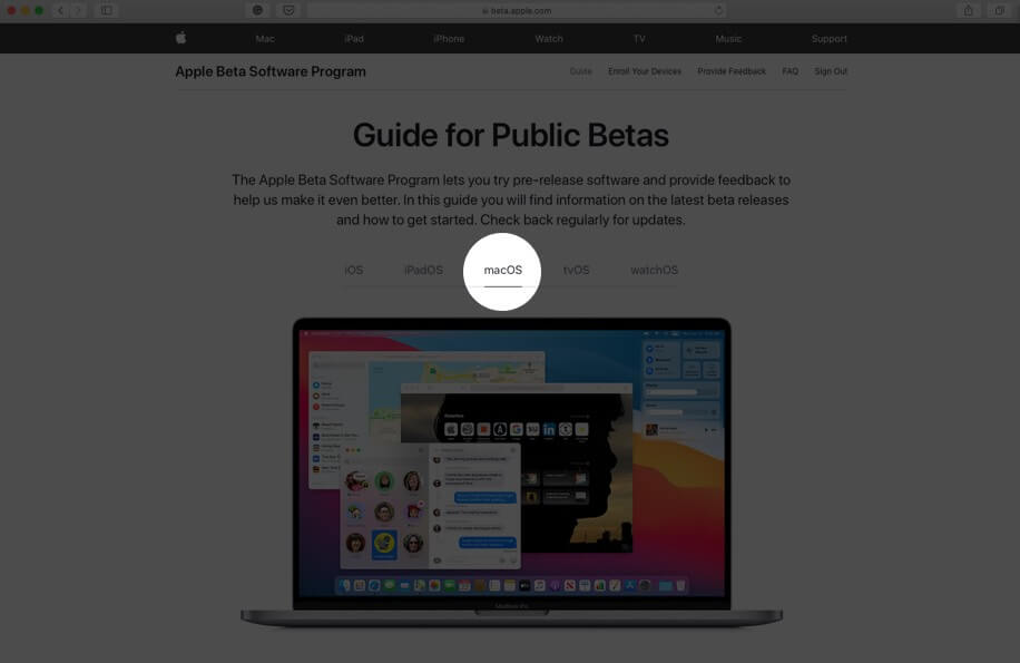 on public betas screen select macos tab