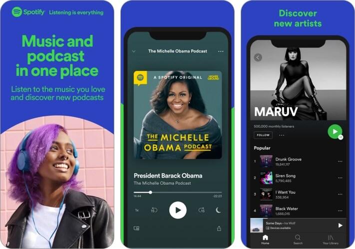 Spotify iPhone App Screenshot
