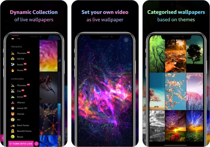 10000+ Wallpapers and Themes iPhone and iPad App Screenshot
