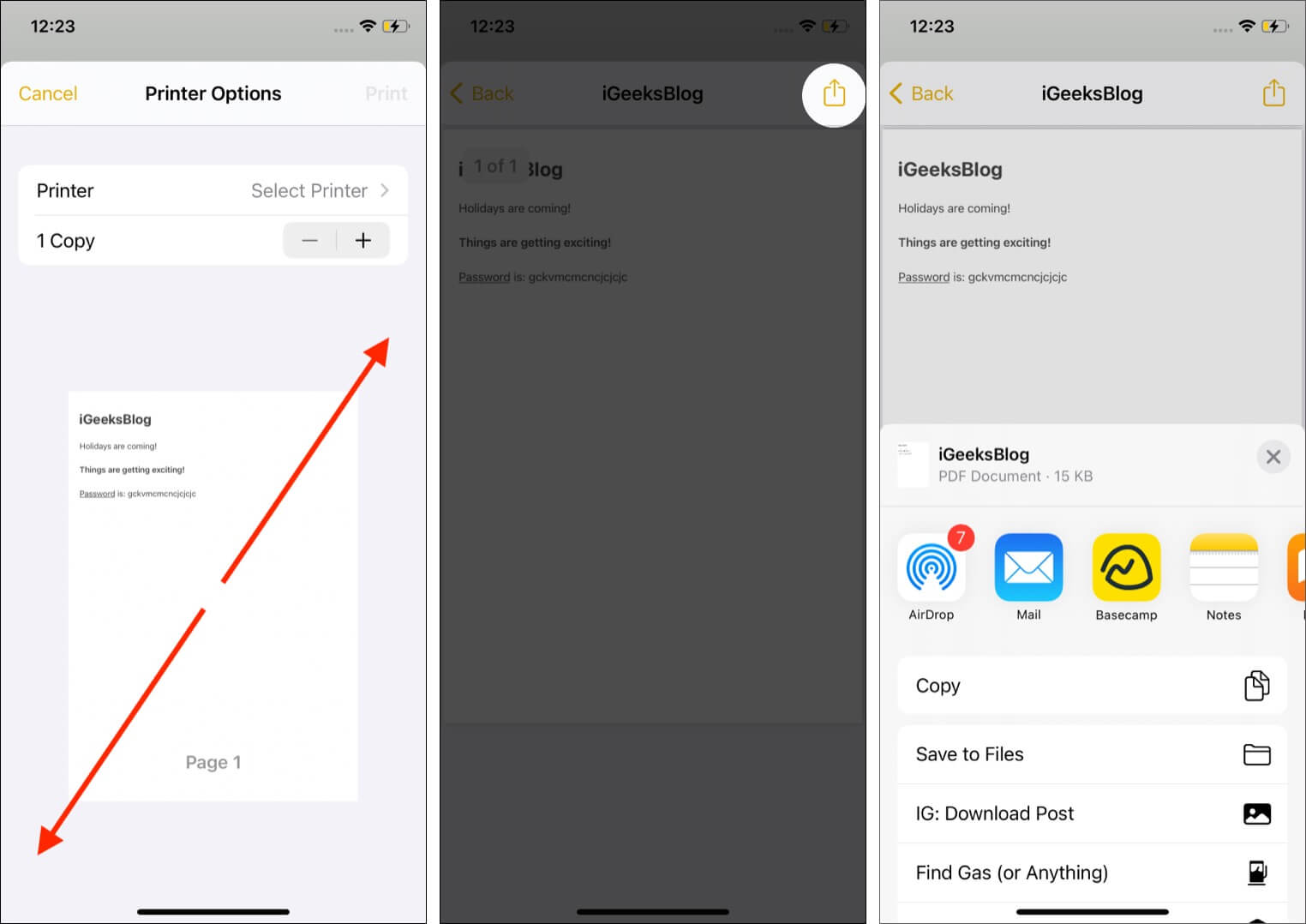 Pinch out thumbnail and tap Share Icon to save or send note as PDF