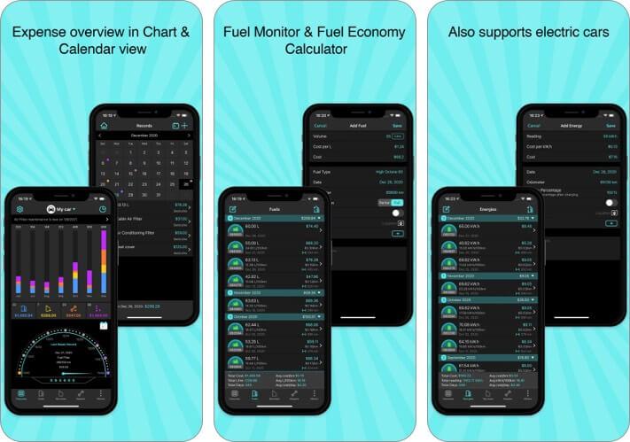 Скриншот приложения для технического обслуживания автомобилей iPhone Fuel Monitor Pro
