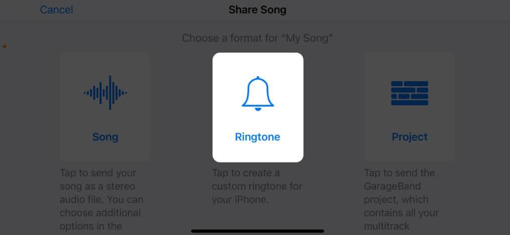 Wählen Sie Klingelton und tippen Sie auf dem iPhone auf Exportieren