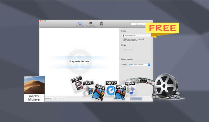 AVC iPad Video Converter