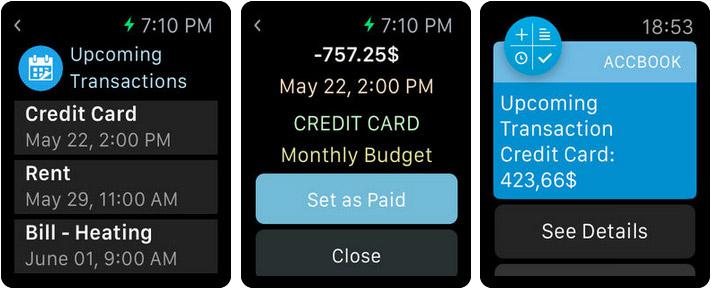 Account Book Money Manager Apple Watch App Screenshot
