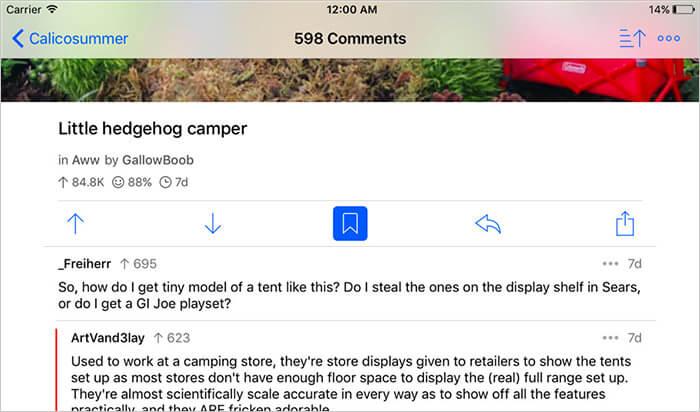 Apollo iPad Reddit App Screenshot