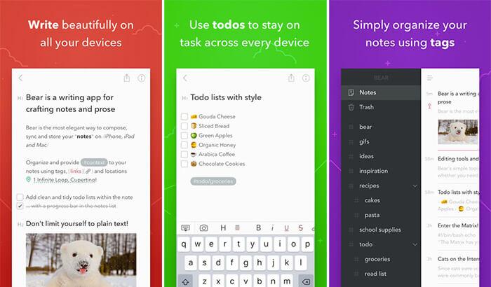 Bear Drag and Drop iPad App Screenshot