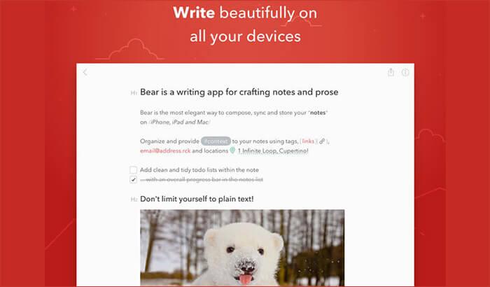 Bear iPad Note Taking App Screenshot