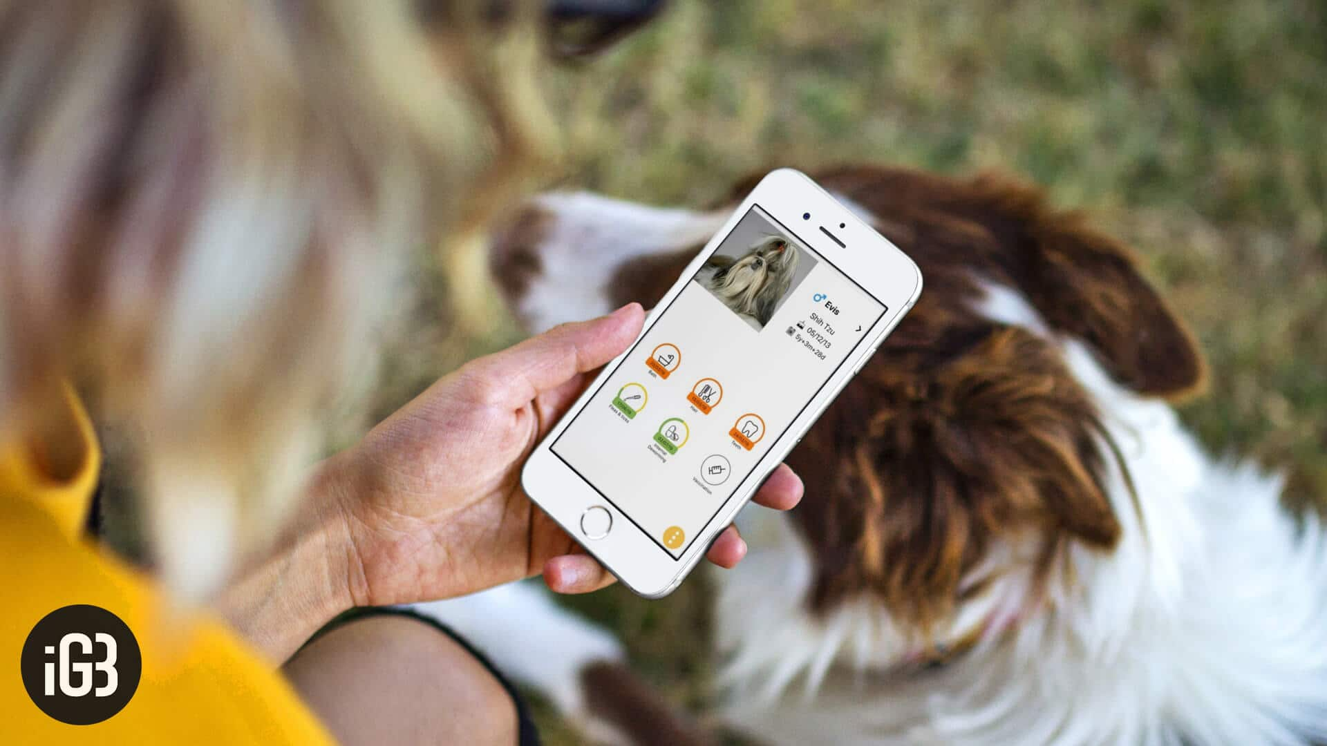 Best Pet Care Apps for iPhone and iPad