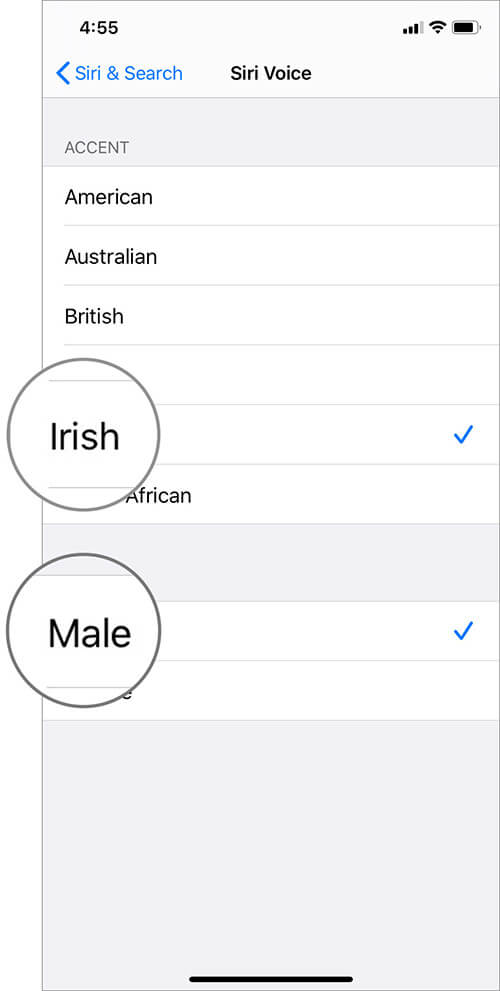 Change Siri Accent and Gender in iOS 13 on iPhone