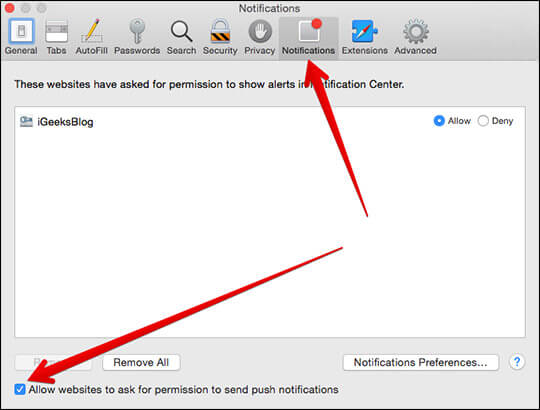 Check Allow Websites to ask for permission to send push notifications on Mac