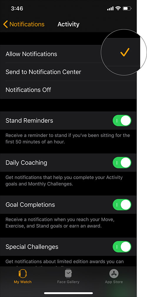 Choose Allow Notifications on Apple Watch