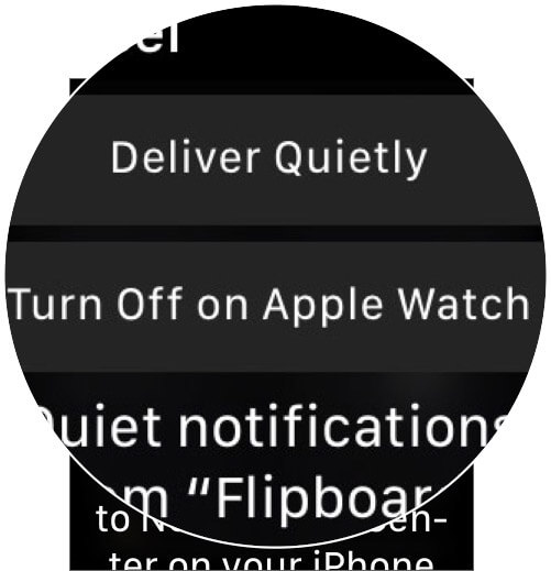 Choose Between Deliver Quietly or Turn Off Option on Apple Watch