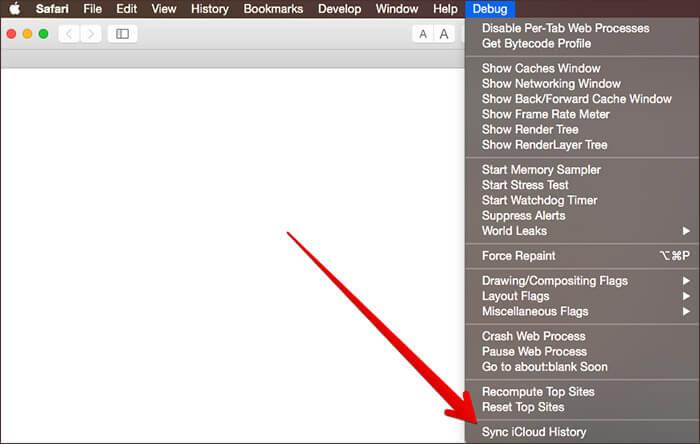 Click Sync iCloud History in Safari Debug Menu