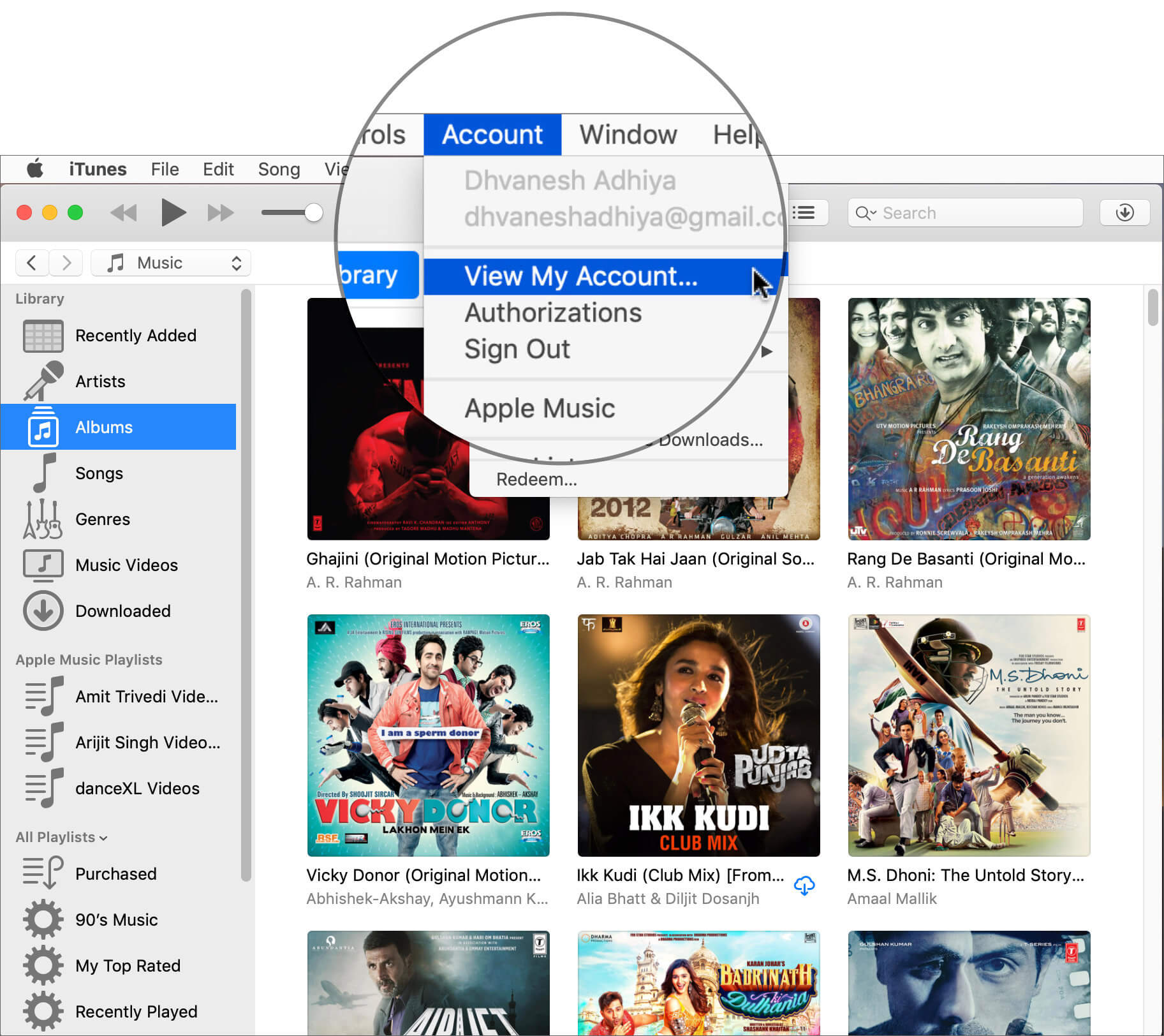 Click on Accounts Then View My Account in iTunes on Mac