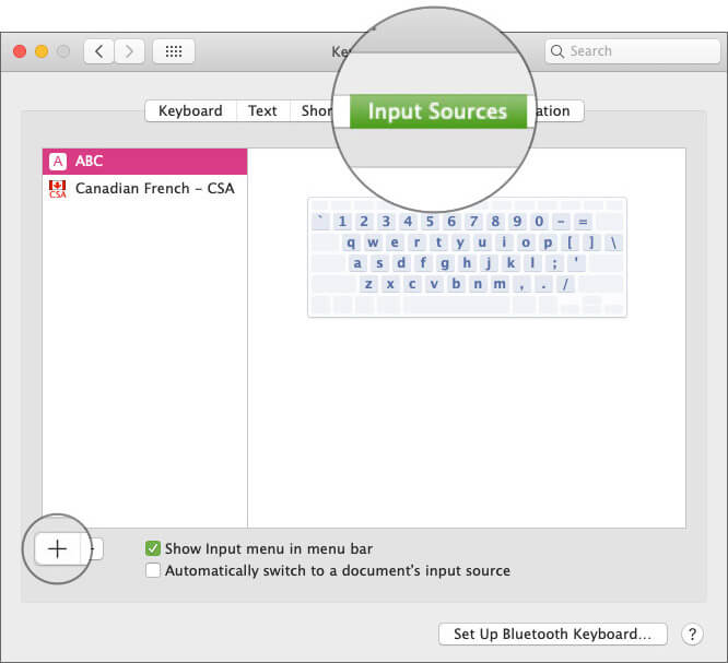 Click on Input Sources tab and then Click on Plus button in Keyboard Settings on Mac