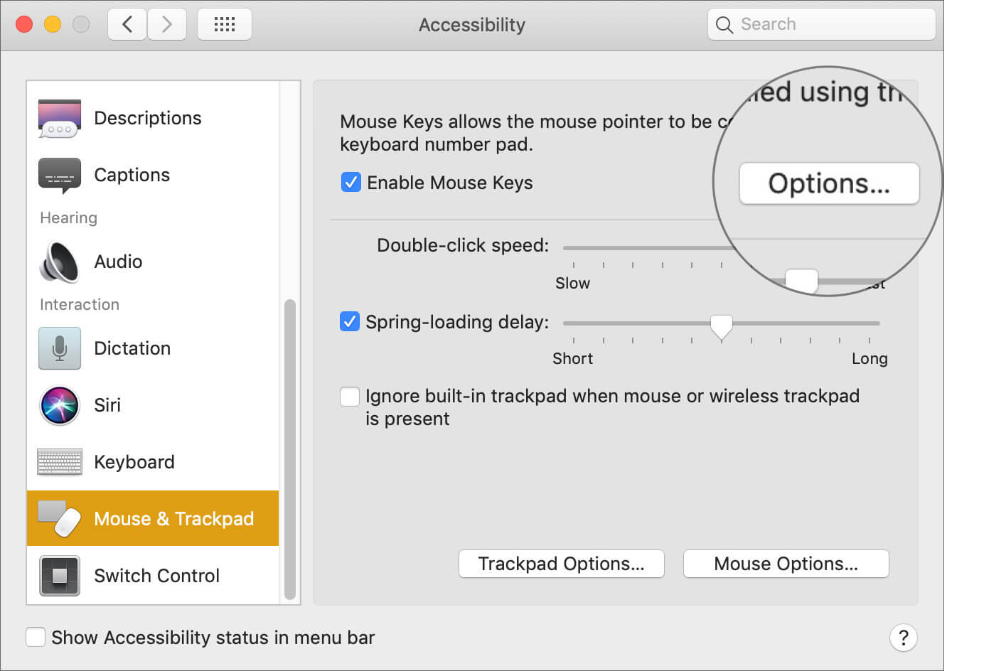 Click on Options Next to Enable Mouse Keys on Mac