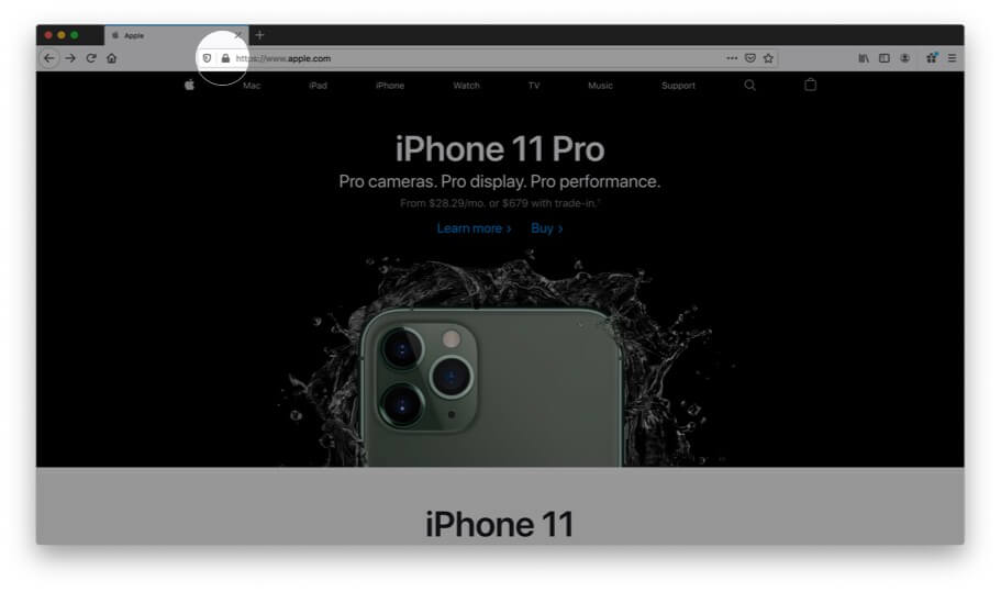 Click on Padlock icon in Firefox on Mac