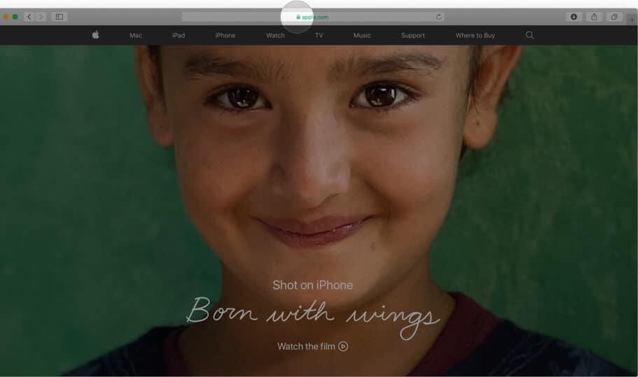 Click on Padlock icon in Safari on Mac