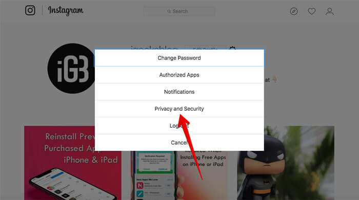 Click on Privacy and Security in Instagram Web