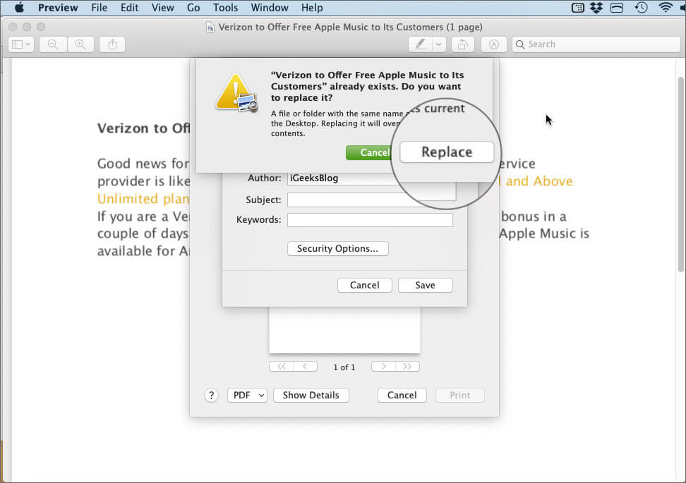 Click on Replace to Password Protect PDF File on Mac