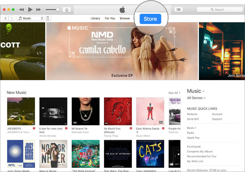 Click on Store in iTunes on Mac