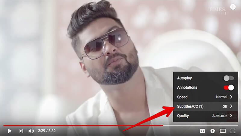 Click on Subtitles CC in YouTube on Mac or Windows PC