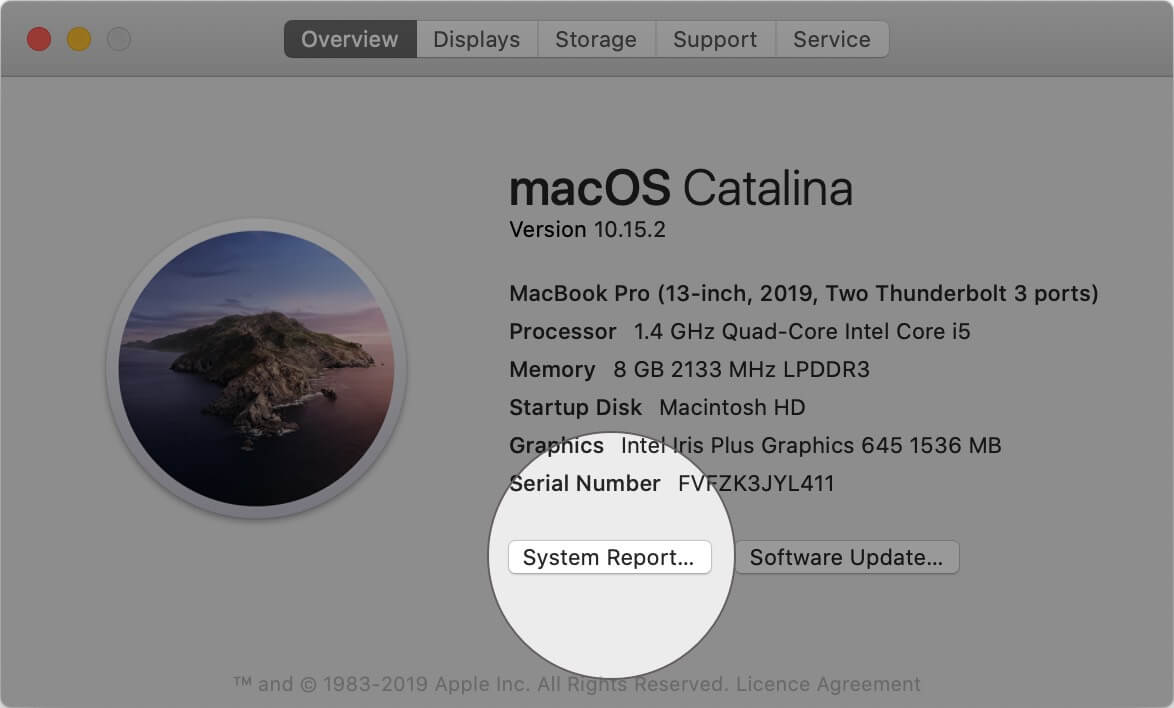 Click on System Report in About This Mac