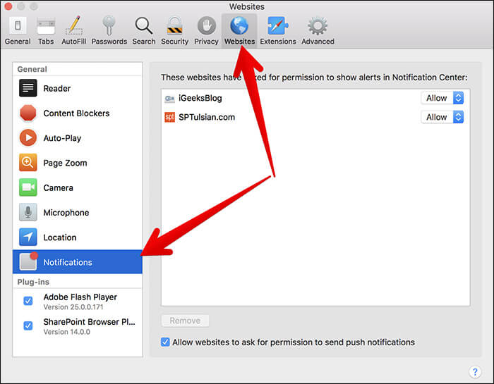 Click on Websites Tab then Click on Notifications in Safari