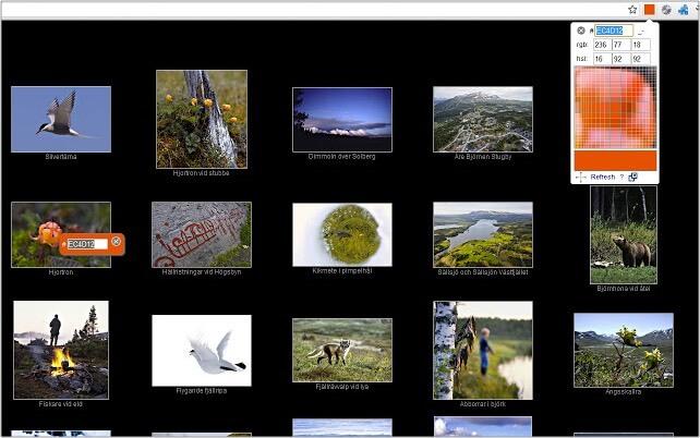 Color Pick Eyedropper Google Chrome extension