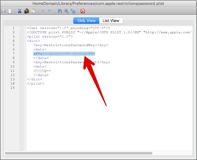 Copy Restrictionpassword Key from iBackupBot on Mac