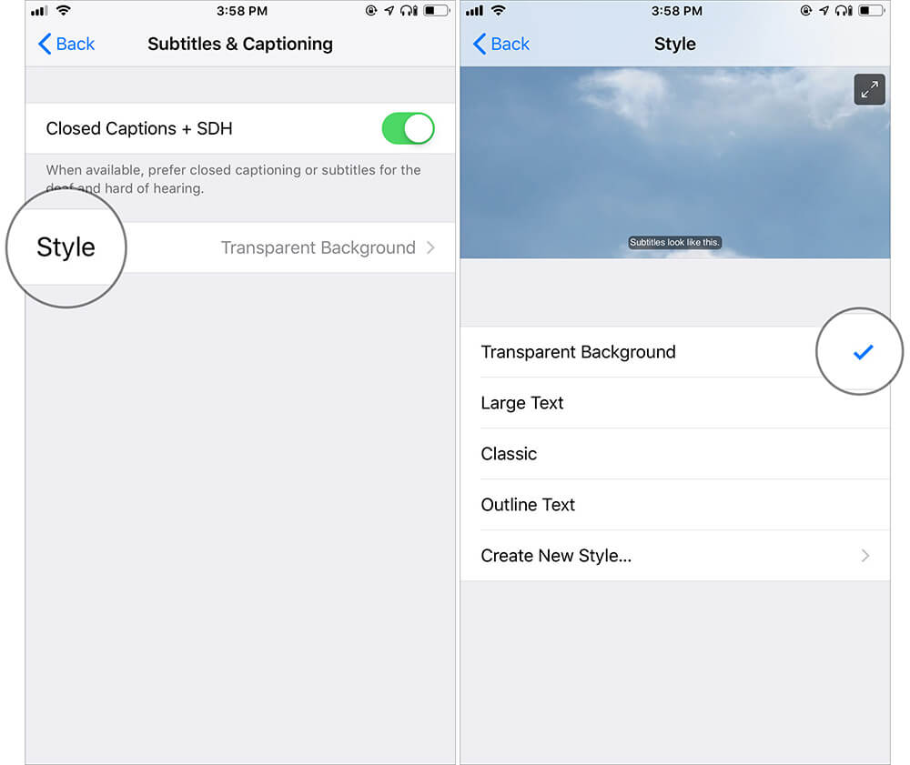 Customize Style for Media on iPhone or iPad