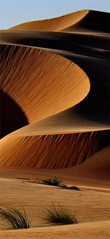 Desert iPhone XS Wallpaper