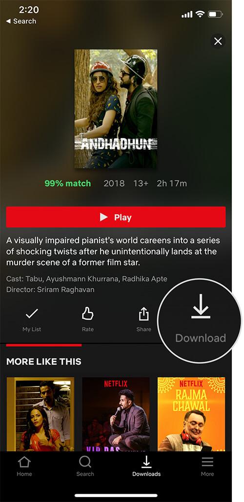 Download NetFlix Movie
