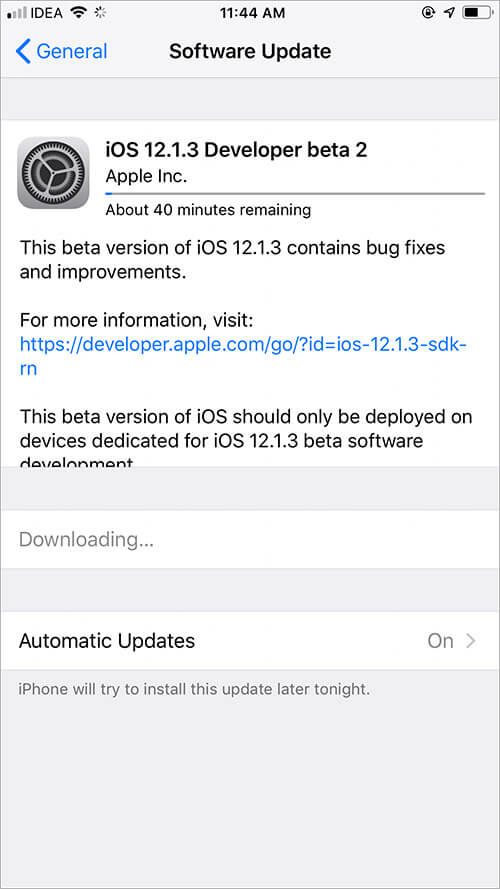 Downloading the latest software update on iPhone
