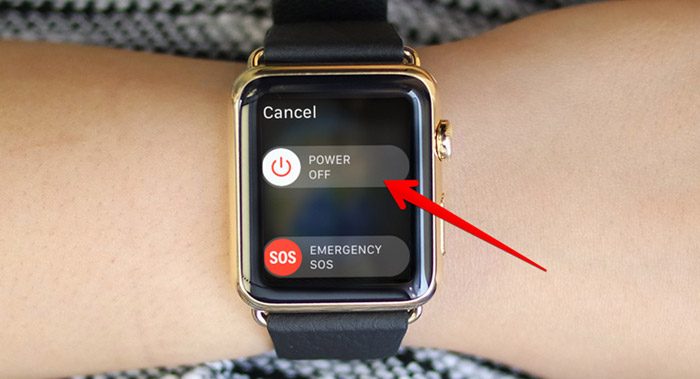 Drag the Slider to Right to Power Off Apple Watch
