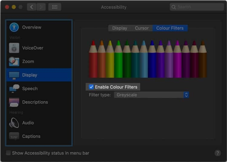 Enable Color Filters under display from Accessibility Setting on Mac