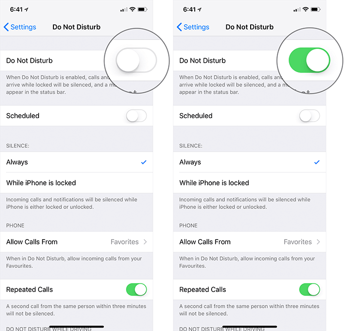 Enable Do Not Disturb in iOS 12 on iPhone