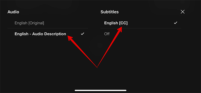 Enable Subtitles in Netflix on iPhone and iPad