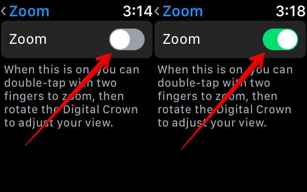 Enable Zoom on Apple Watch